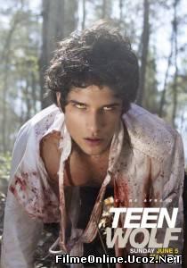 Teen Wolf Sezonul 2 Episodul 8 Online Subtitrat