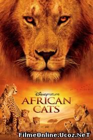 African Cats: Kingdom of Courage – Feline africane (2011) Online Subtitrat
