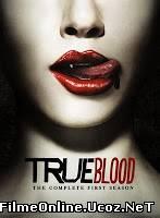 True Blood Sezonul 1 Episodul 8 Online Subtitrat