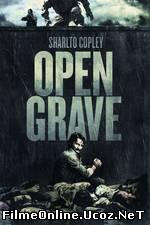 Open Grave (2013) Online Subtitrat