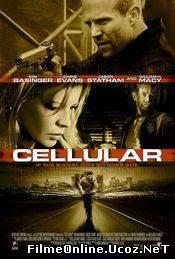 Cellular (2004)